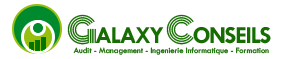 GALAXY CONSEILS LOGO
